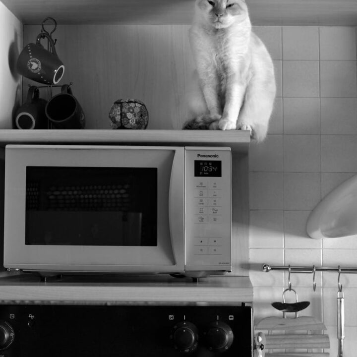 Tips To Use a Microwave Safely